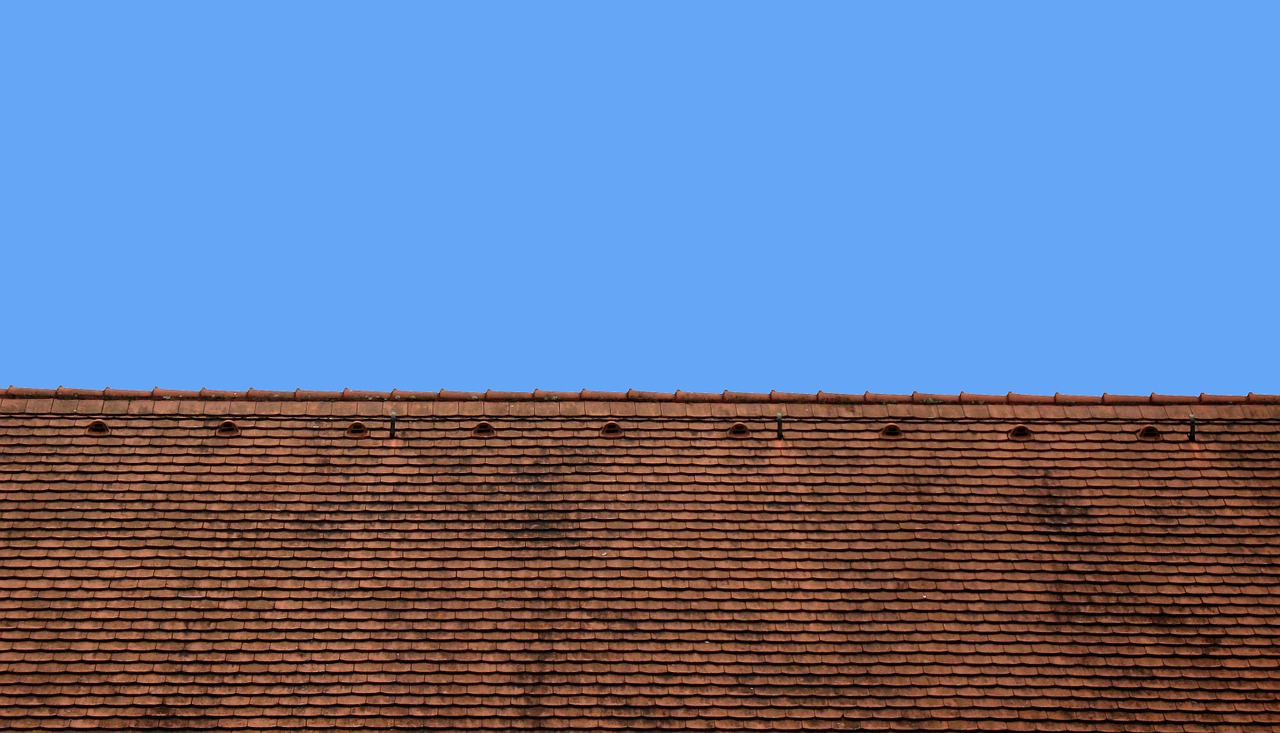 Top 5 Roof Problems To Look For